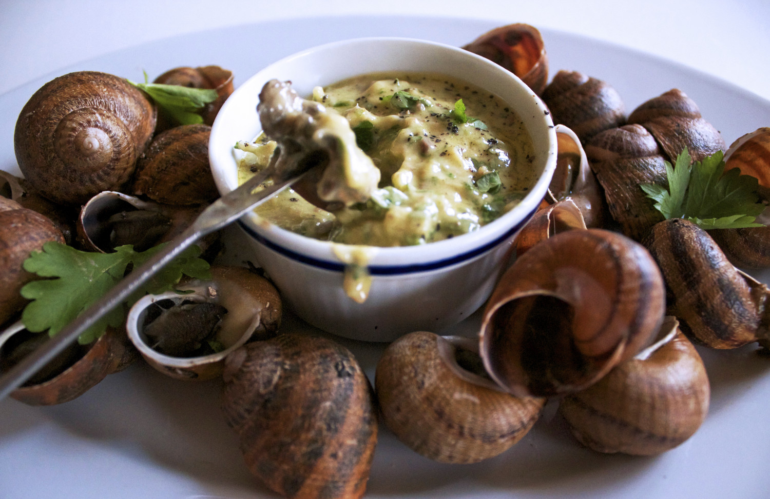 Snails with Parsley + Anchovy Butter