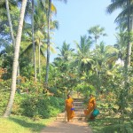 TRAVEL : A week of ayurvedia at Somatheeram, India, Tess Ward, food, massage, detox